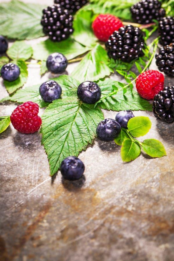 Frisch sortierte Beeren in der hölzernen Schüssel Saftiges und neues blueber stockbild