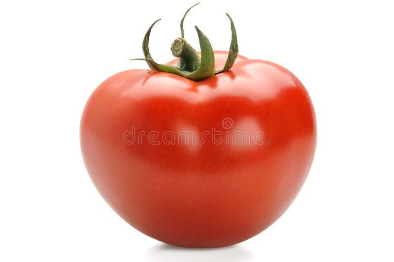 Frisch u. Tomate stockfotografie