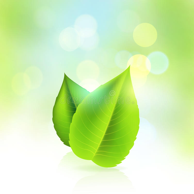 Frisch und grün stock abbildung
