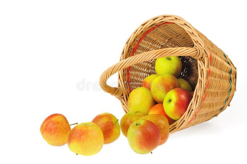 Frische Äpfel, die aus dem Korb heraus - ein getrennt verschüttet werden stockfotografie