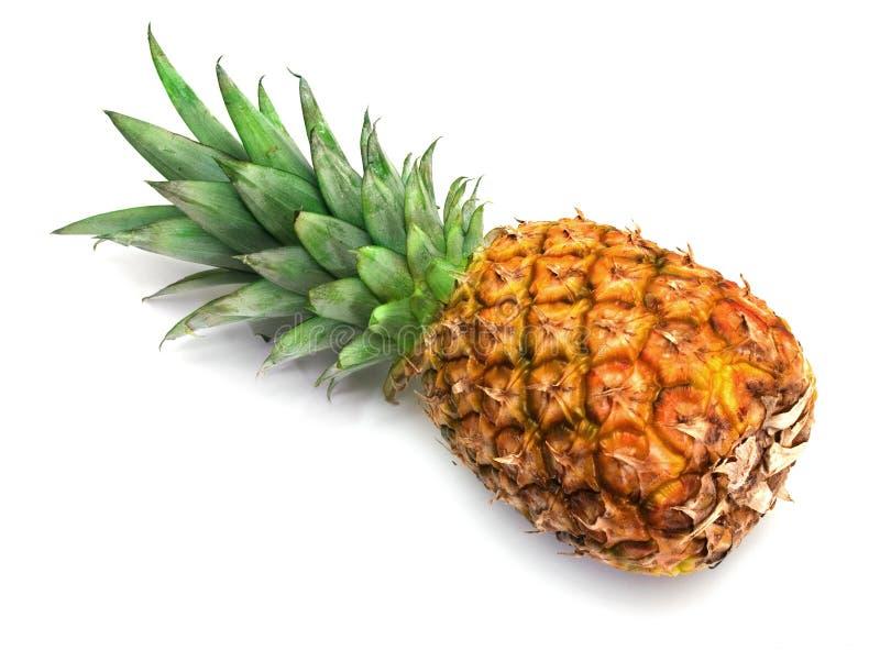 Frische Ananas lizenzfreie stockfotografie