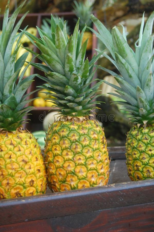 Frische Ananas-Stange lizenzfreie stockfotos