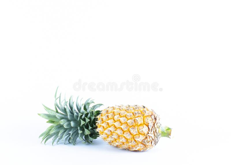 Frische Ananas trägt auf weißen Hintergründen mit Kopienraum für y Früchte lizenzfreie stockfotos