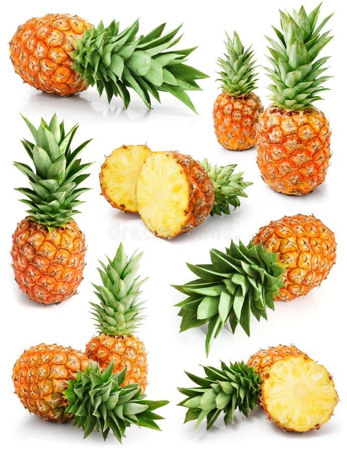 Frische Ananas trägt mit Schnitt- und Grünblättern Früchte stockfoto