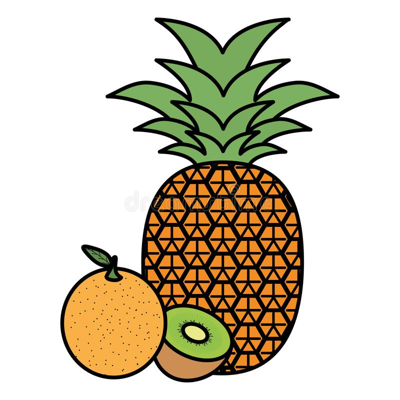 Frische Ananas und Orange mit Kiwi vektor abbildung