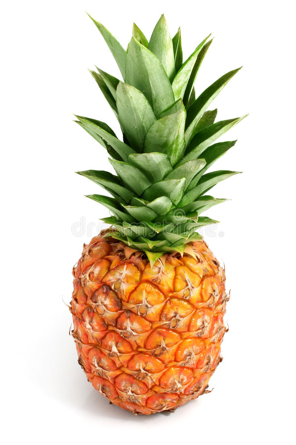 Frische Ananasfrüchte mit grünen Blättern stockfotografie