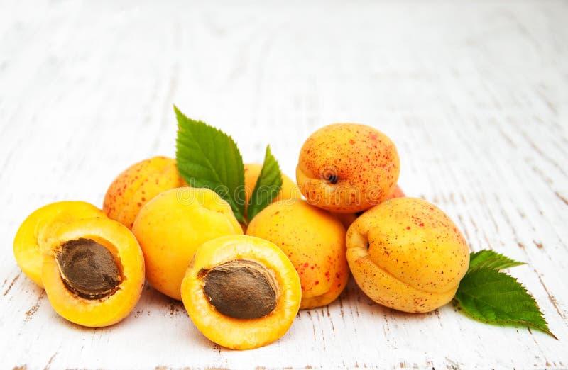 Frische Aprikosen stockbild