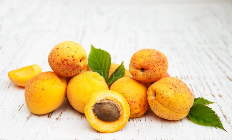 Frische Aprikosen stockfotografie
