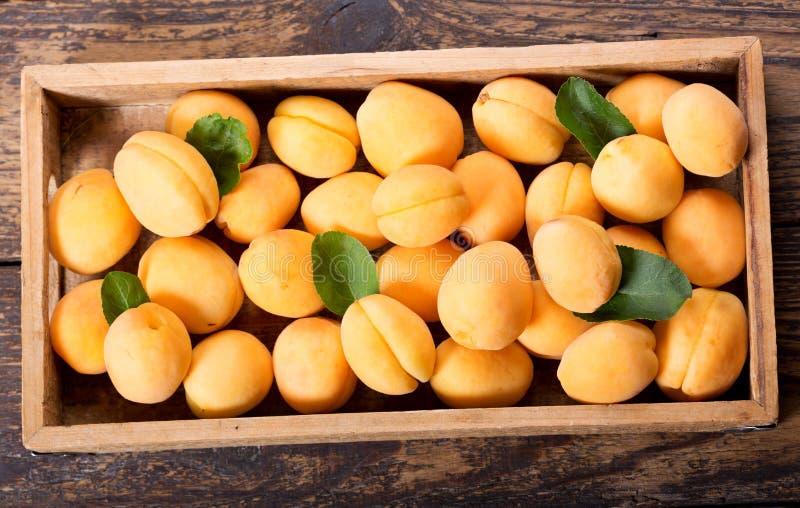 Frische Aprikosen in einem Kasten lizenzfreies stockbild