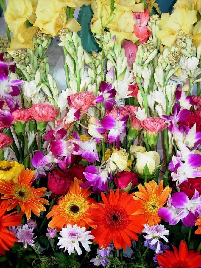 Frische Ausstellung-Blumen stockfotografie