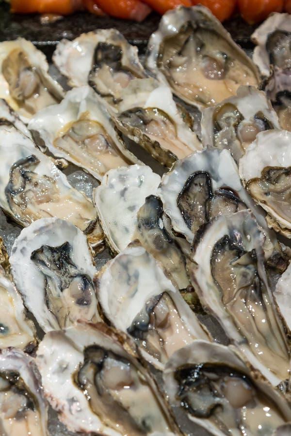 Frische Austern auf Buffetlinie stockfotos