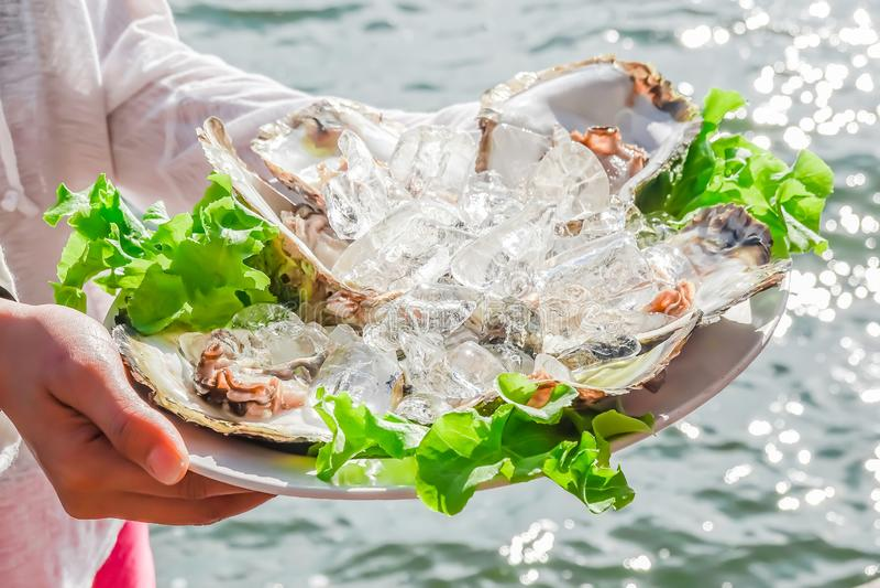 Frische Austern auf dem Eis gedient mit Kalk und gegrillter Zwiebel in den Frauenhänden, Meeresfrüchtemenüentwurf, thailändische  stockbilder