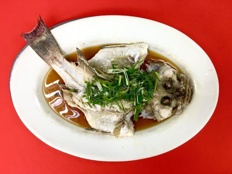 Frische Barschfische gedämpft in der Sojasoße lizenzfreie stockbilder