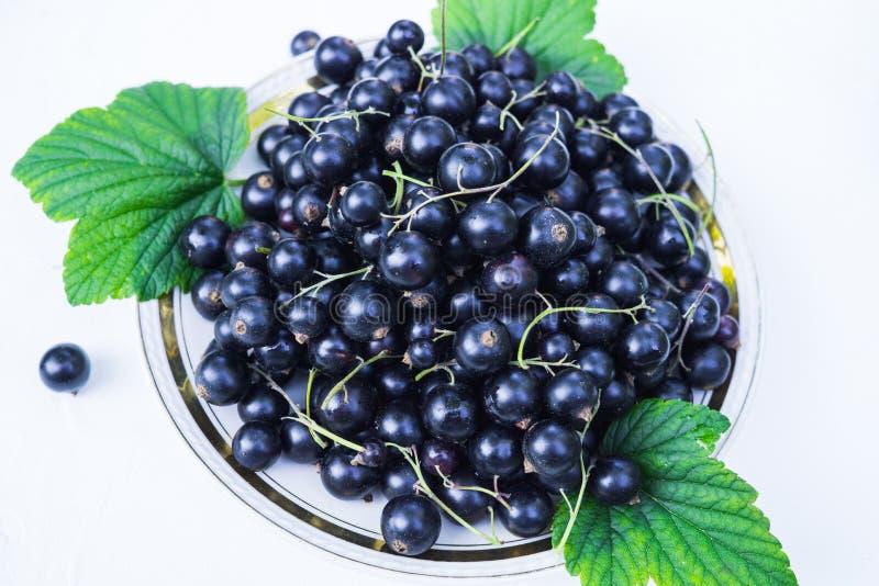 Frische Beeren der Schwarzen Johannisbeere in einer Platte auf einer Tabelle. F?r eine Di?t und eine S?ttigung mit Vitaminen stockfotos