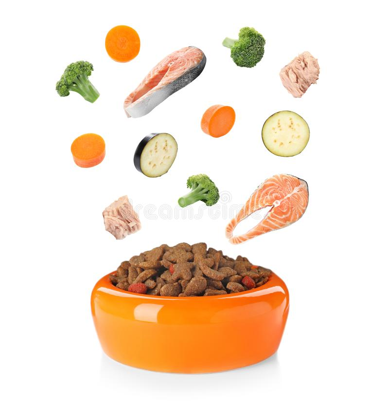 Frische Bestandteile, die in Schüssel mit trockener Nahrung für Haustiere fallen lizenzfreie stockfotos