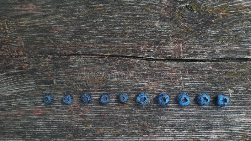 Frische Blaubeere Frisch ausgewählte Blaubeeren lizenzfreies stockfoto