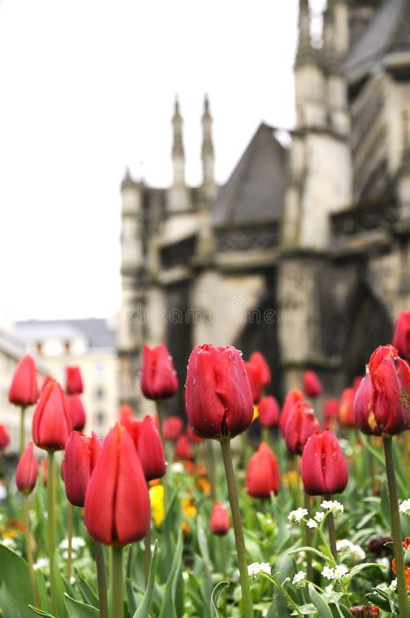 Frische Blume und altes Kirchegebäude lizenzfreie stockbilder