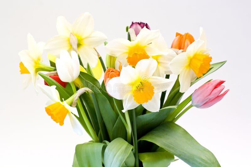 Download Frische Blumen stockbild. Bild von schönheit, blumenstrauß - 9092245
