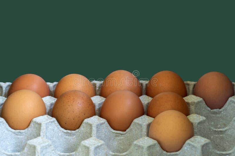 Frische braune Eier des Gefl?gels auf Papierbeh?lter Frische Eier vom Bauernhof lizenzfreie stockfotos