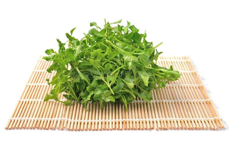 Frische Brunnenkresse vegatable auf Bambus stockfoto