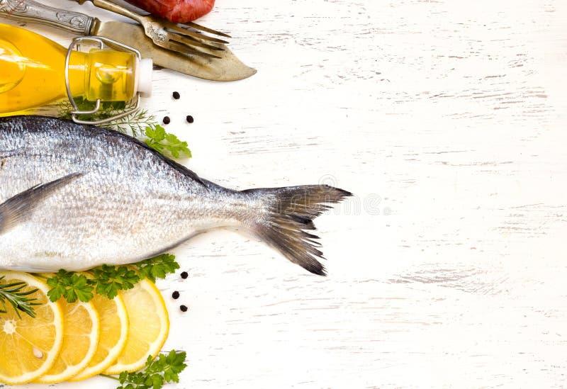 Frische dorado Fische lizenzfreie stockbilder