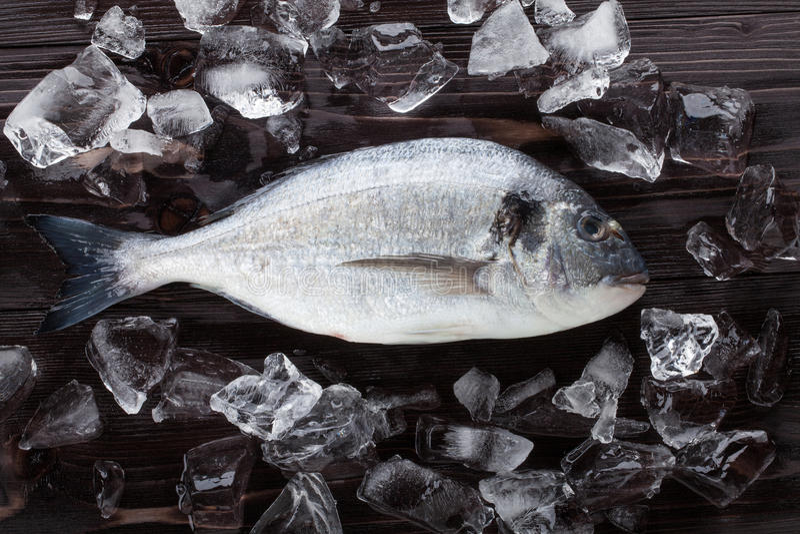 Frische dorado Fische auf Eis stockfoto