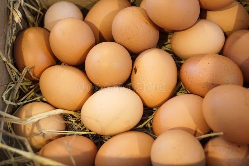 Frische Eier des Bauernhofes im Korb lizenzfreies stockfoto