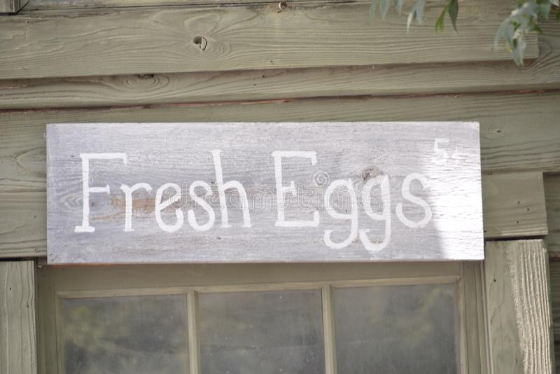 Frische Eier von einem Huhn stockbilder