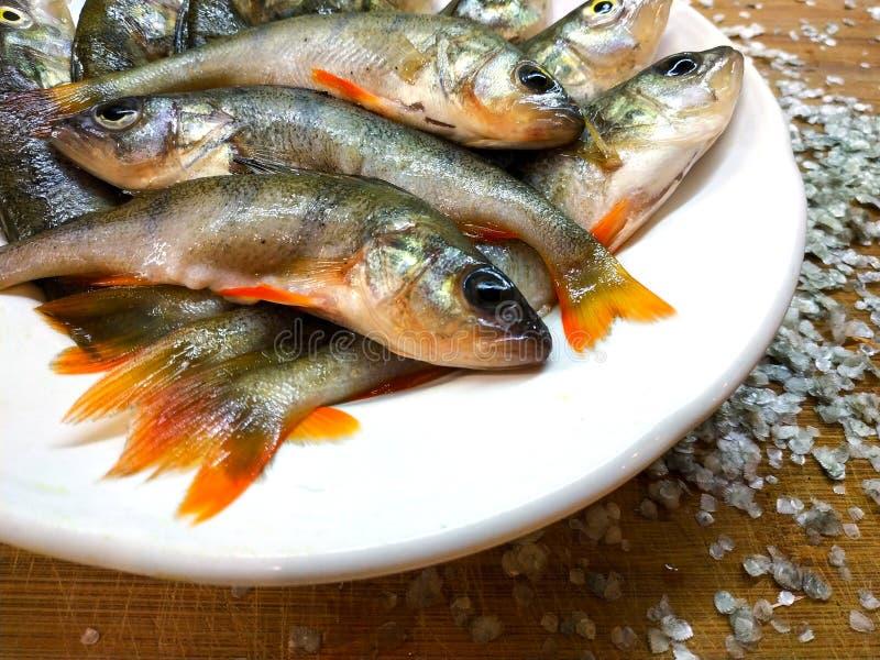 Frische eingestufte Fischstange liegt in der Platte lizenzfreie stockbilder