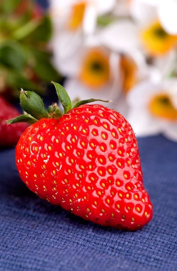 Download Frische Erdbeere stockfoto. Bild von blau, sommer, saftig - 9099362
