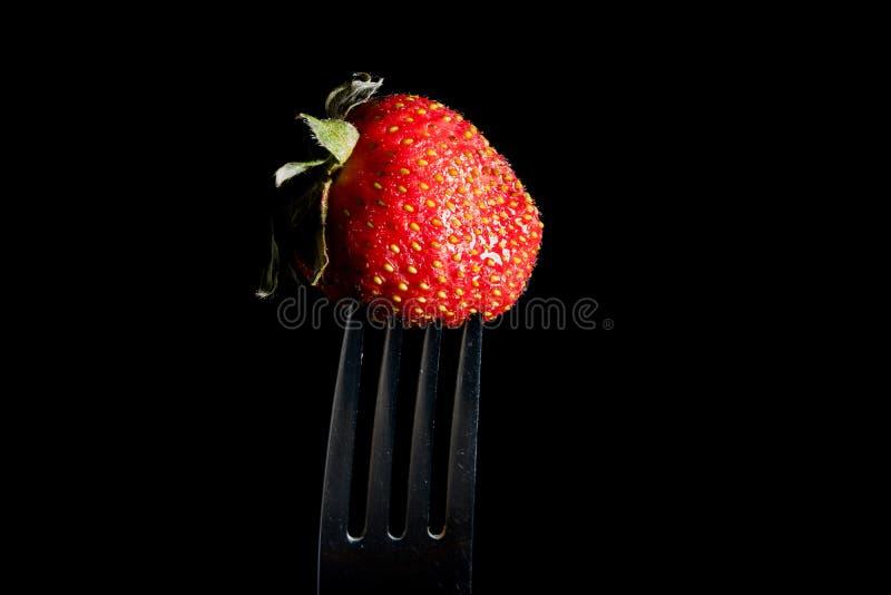 Frische Erdbeere auf der silbernen Gabel lokalisiert auf schwarzem Hintergrund Italienische K?che begleitet von der Huhnso?e lizenzfreie stockbilder