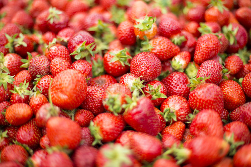Frische Erdbeeren auf Markt stockfotografie