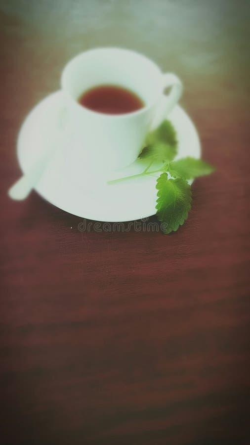 Frische Erdbeeren und Tee auf Porzellanporzellantellern stockfotografie