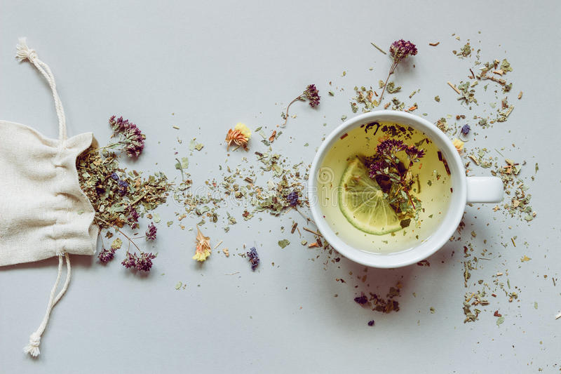 Frische Erdbeeren und Tee auf Porzellanporzellantellern Trocknen Sie Kräutertee und Schale heißen Tee auf dem grauen Hintergrund lizenzfreie stockbilder