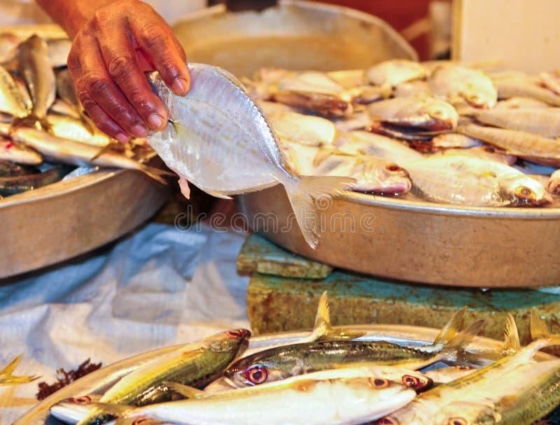 Frische Fische im Markt lizenzfreie stockfotografie