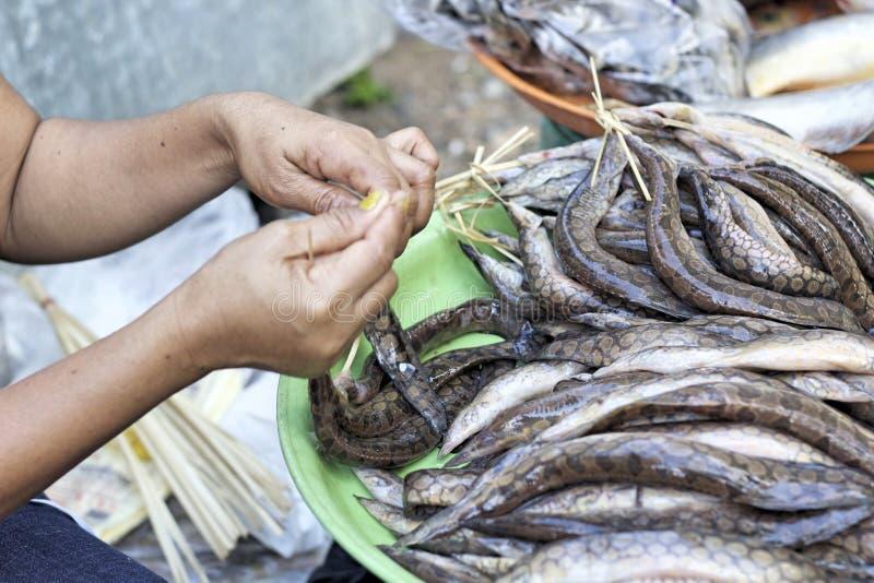 Frische Fische - im Markt lizenzfreies stockbild