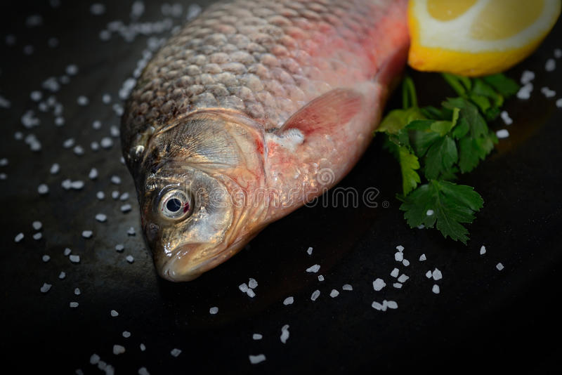 Frische Fische mit Zitrone und Grüns auf einem schwarzen Hintergrund lizenzfreies stockfoto