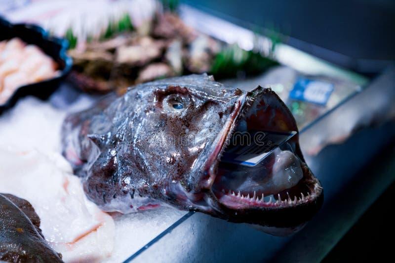 Frische Fische zeigen auf englischem Markt für Verkauf an Korken/Irland lizenzfreie stockbilder