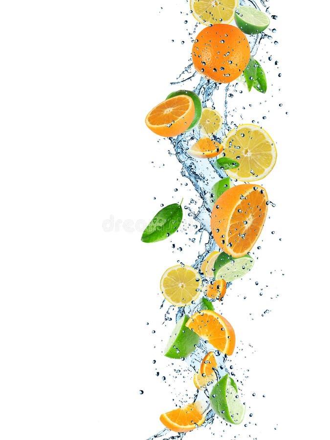 Frische Früchte mit Wasserspritzen stockbild