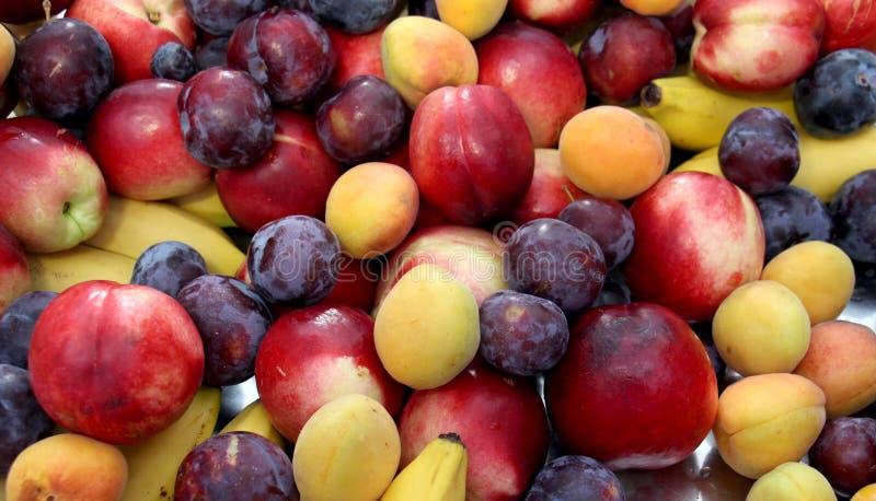 Frische Früchte, Pflaumen, Aprikosen, stockfoto