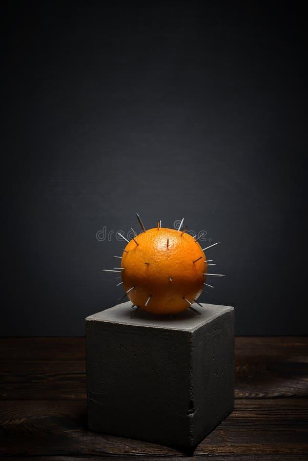 Frische Frucht auf dunklem Hintergrund auf konkretem Stand Saftige Orange mit den scharfen Dornen stockbild