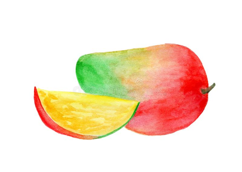 Frische Frucht gemalt im Aquarell stockfotos