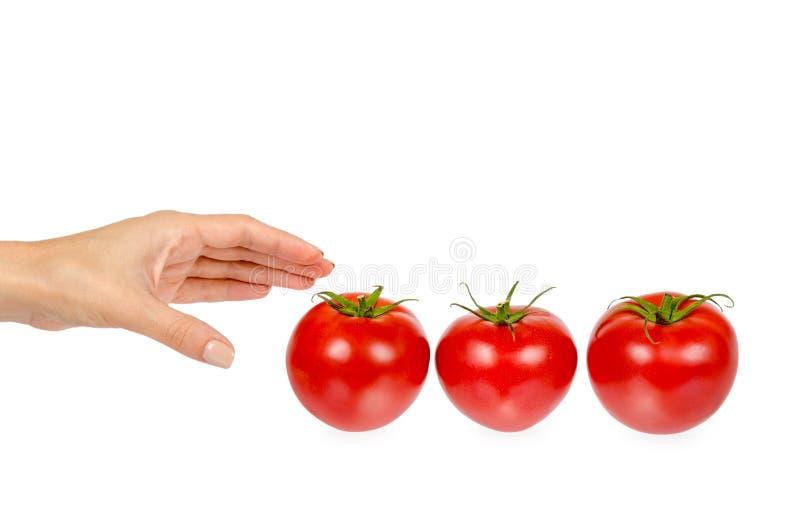 Frische ganze rohe rote Tomate mit grünem Blatt und der Hand, lokalisiert auf weißem Hintergrund lizenzfreies stockbild