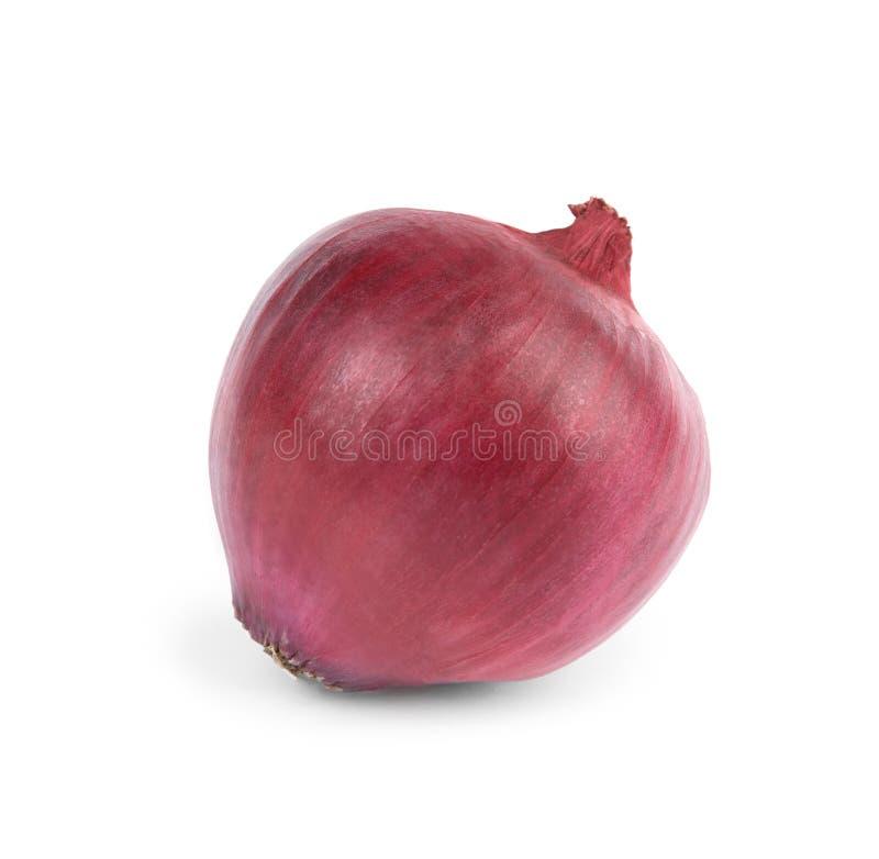 Frische ganze rote Zwiebel auf Wei? stockfotos
