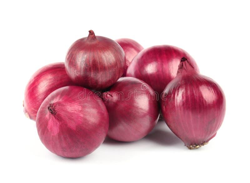 Frische ganze rote Zwiebeln auf Wei? stockbilder