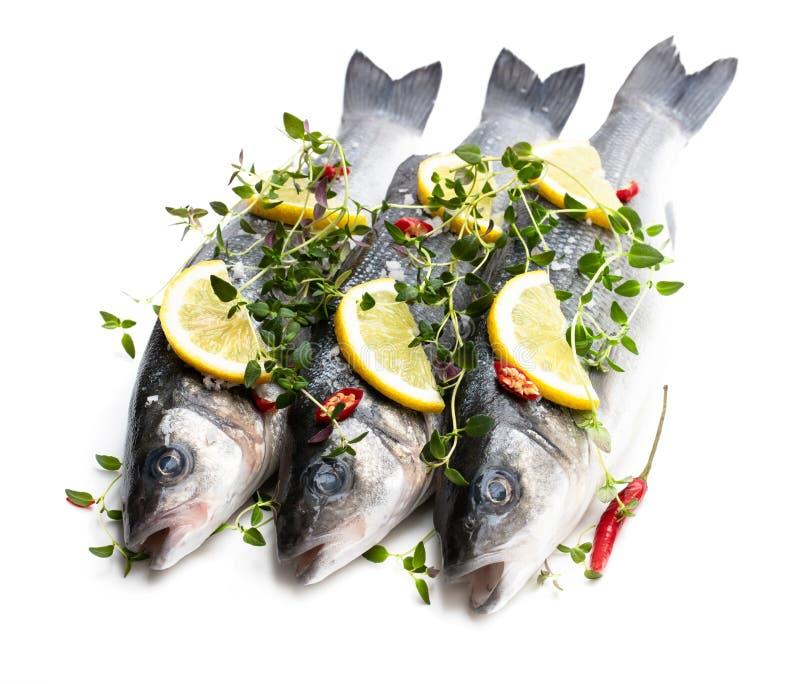 Frische ganze Wolfsbarschfische mit der Zitrone und Gew?rzen lokalisiert auf einem Wei? lizenzfreie stockbilder