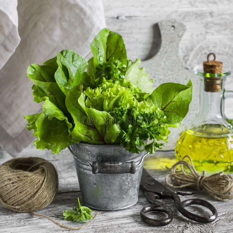 Frische Gartenkräuter in einem Blecheimer, Olivenöl, alte Weinlese scissors auf einem hellen hölzernen Hintergrund stockbilder