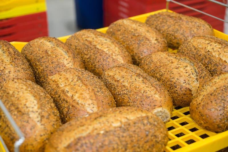 Frische gebackene Laibe von multigrain Brot legten dar, um abzukühlen stockbilder