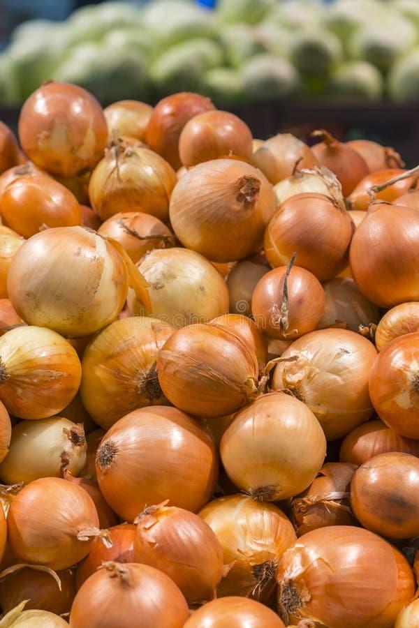 Frische gelbe Zwiebeln als Hintergrund Gemüsegeschäft Gelbe Zwiebel liegt in einer Kiste in einem zum Verkauf stehenden Laden Ver lizenzfreie stockfotografie