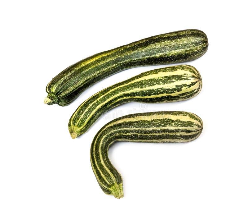 Frische gestreifte Zucchini lokalisiert auf weißem Hintergrund lizenzfreie stockfotos